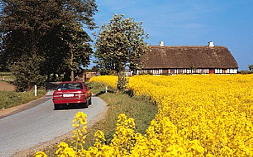 ferie Sønderjylland Øst - feriebolig Sønderjylland Øst
