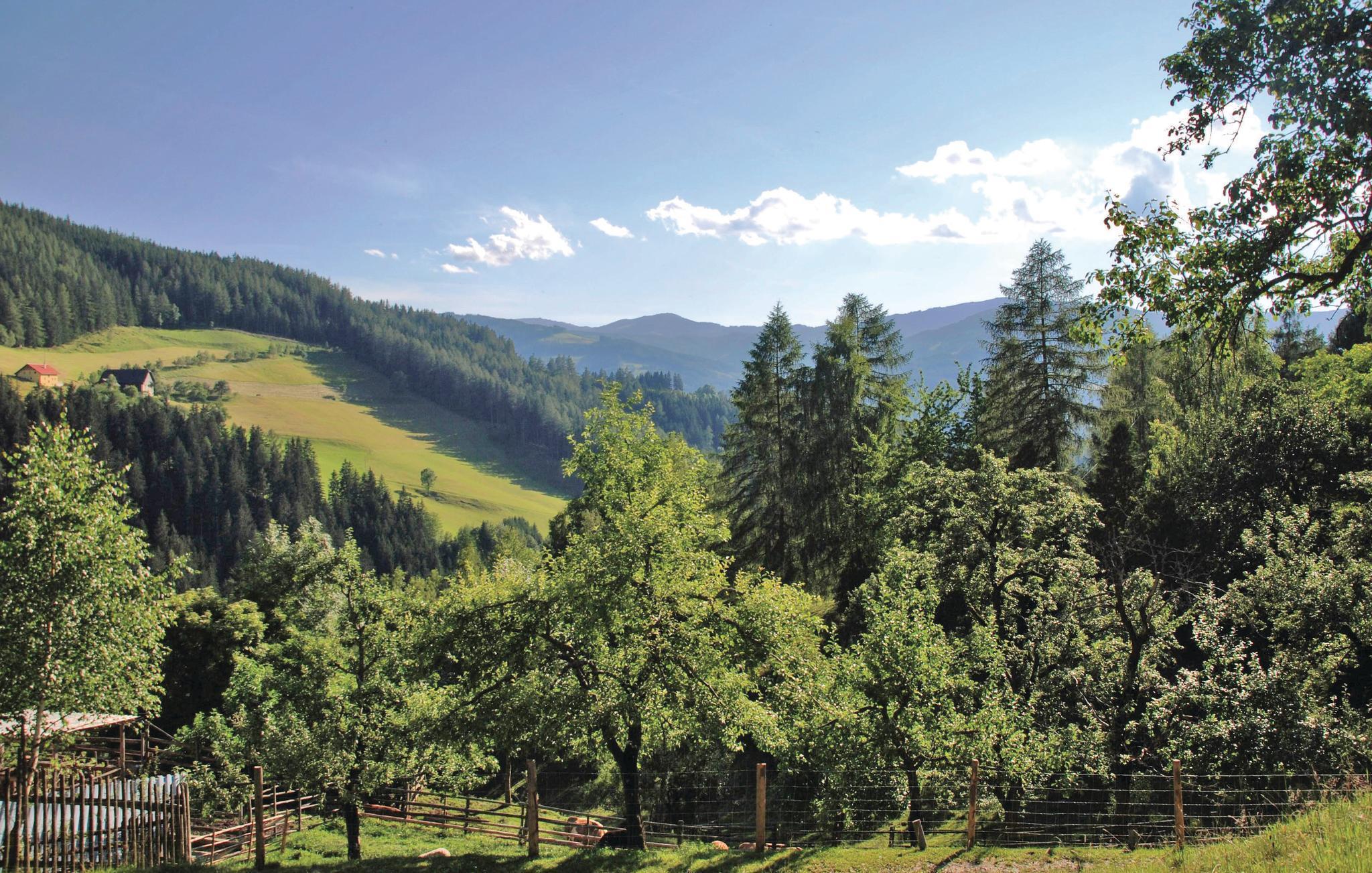 Kennenlernen Aus Alpbach Single App Aus Sankt Nikolai Im